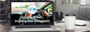 Online Driver Risk Assessment