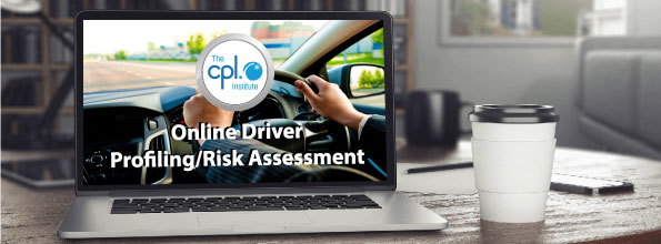 Online Driver Risk Assessment